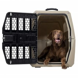 gunner-G1-dog-travel-crate-and-brown-labrador